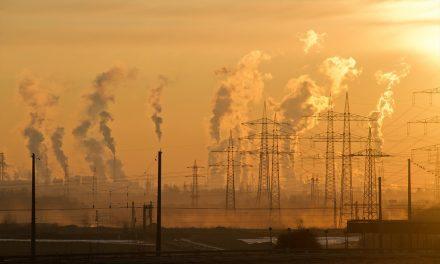 Sir David Attenborough Backs School Climate Strikers