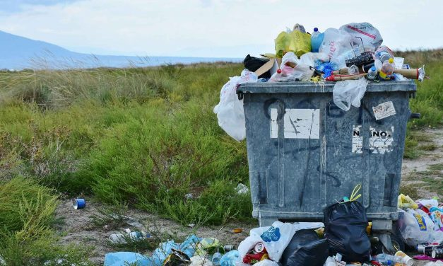 Study Finds Microplastics 'Anywhere and Everywhere'
