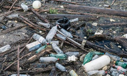 A Million People a Year Dying of Plastic Waste