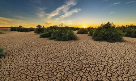 India in Grip of Devastating Drought as Monsoon Rains Fail