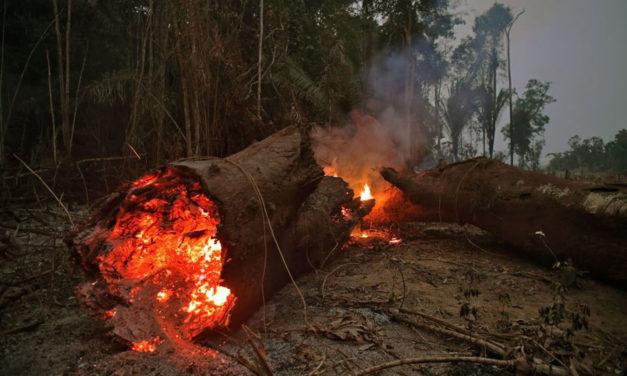 International leaders condemn Bolsonaro for letting Amazon Burn
