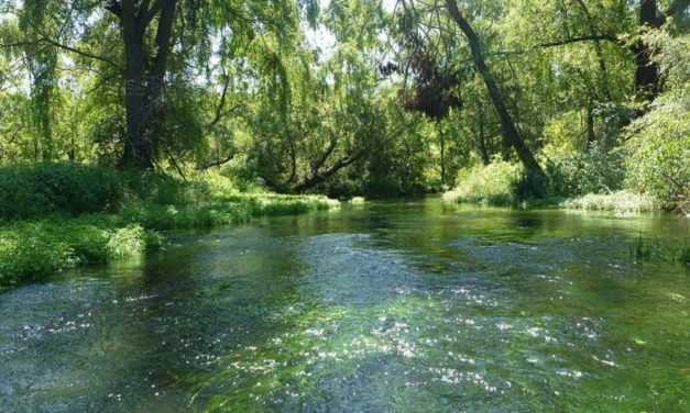 Why Are England's Rivers So Polluted?