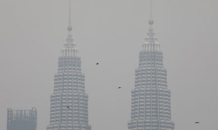 Malaysia Pays the Price for Illegal Forest Fires in Indonesia