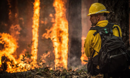 More Than 900,000 People Without Power in California as Wildfire Precaution