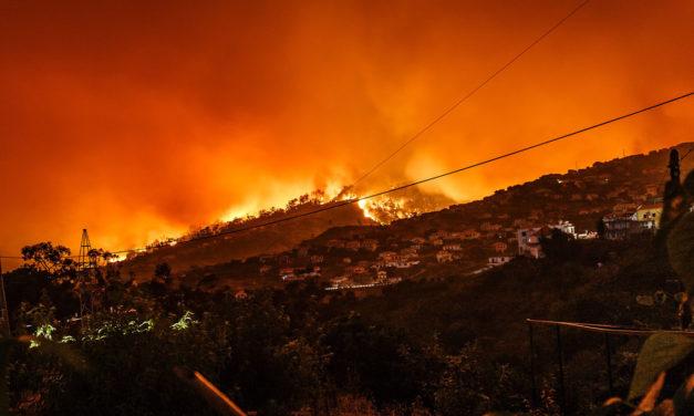 San Bernardino Evacuated as the Former Californian Governor Says Technology Can Stop Fires