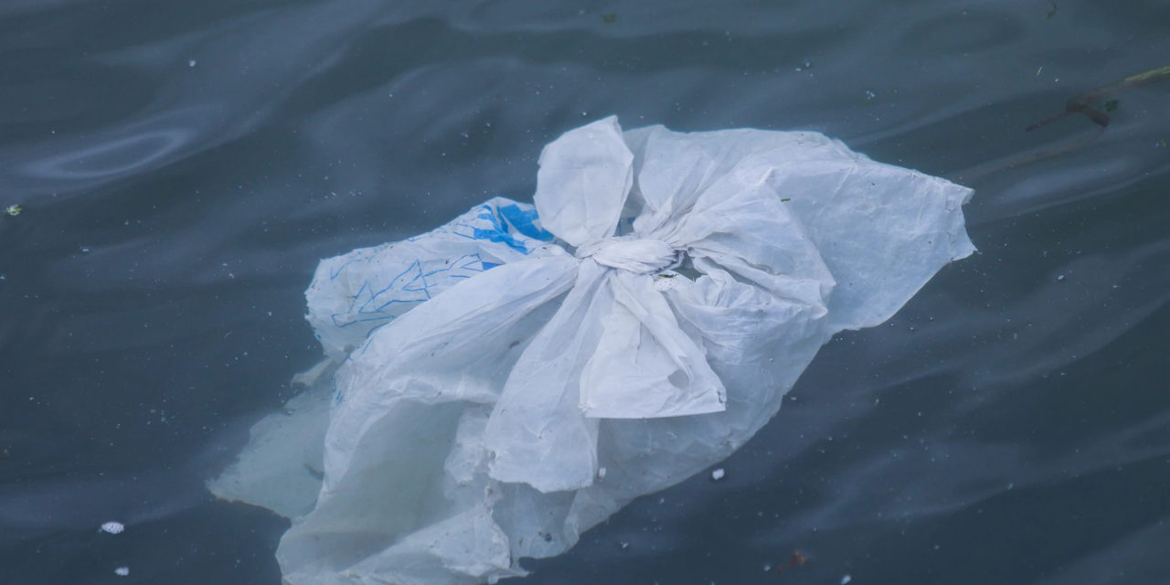 Why is Plastic Pollution a Pressing Environmental Issue?