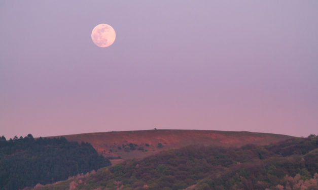 A Super Pink Moon Occurred – and It Was Amazing!