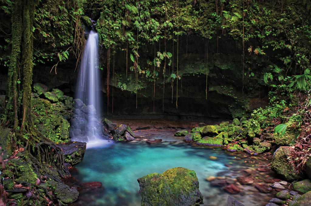 Truly Belong Waterfalls of Dominica